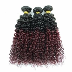 Grace Fantasy Ombre Remy Weft Human Hair Extensions Afro Kinky Curly For Black Women 100% Human Hair Two Tone #1B/99J Burgundy Wine Red Full Head