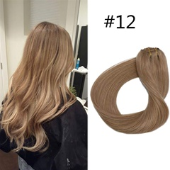 Grace Fantasy human hair light brown color clip in hair extensions straight extensions 70grams with clips remy hair easy wear no tangle free shipping for women