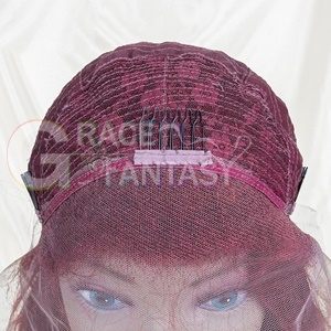 Hair Wigs Pre Plucked Glueless Lace Wigs Human Hair