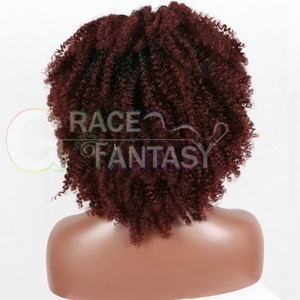 Baby Hair and Hairline Ombre Curly Hair Wigs