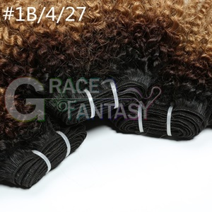 black to brown to blonde kinky curly loos curly hair extensions
