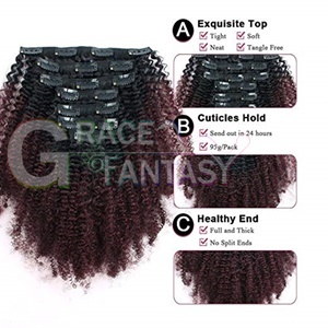 Afro Kinky Curly Clip in Human Hair Extensions