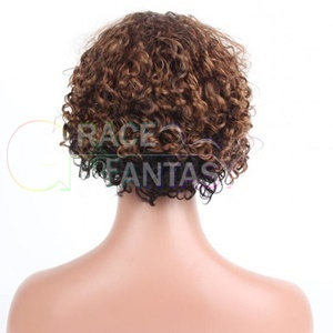 Kinky Curly Brown Human Hair Wig