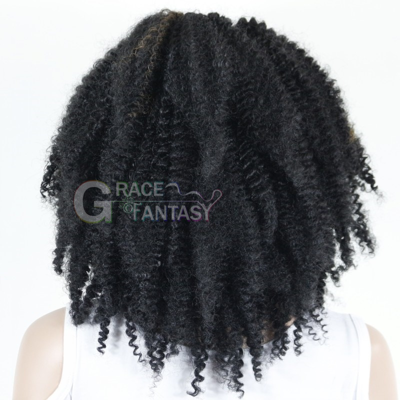 Kinky Curly Highlighted Synthetic Lace Front Wigs