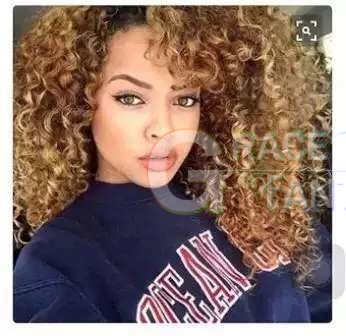 Afro Kinkys Curly Ombre Wigs for Black Women Huamn Hair Heat Resistant Fiber Glueless Long Wigs with Free Wig Cap for Daily Wear Black to Blonde