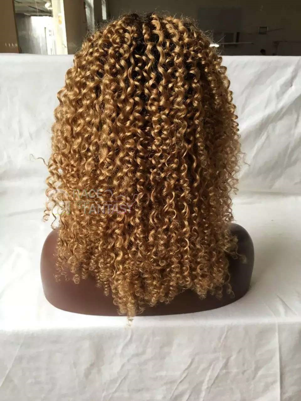 with Free Wig Cap for Daily Wear Black to Blonde